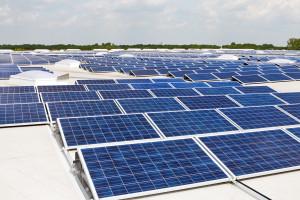 Solpaneler i solcellspark