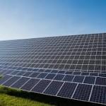 Solceller i en solcellspark